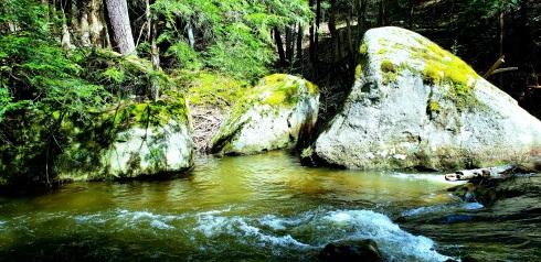rockwatermoss